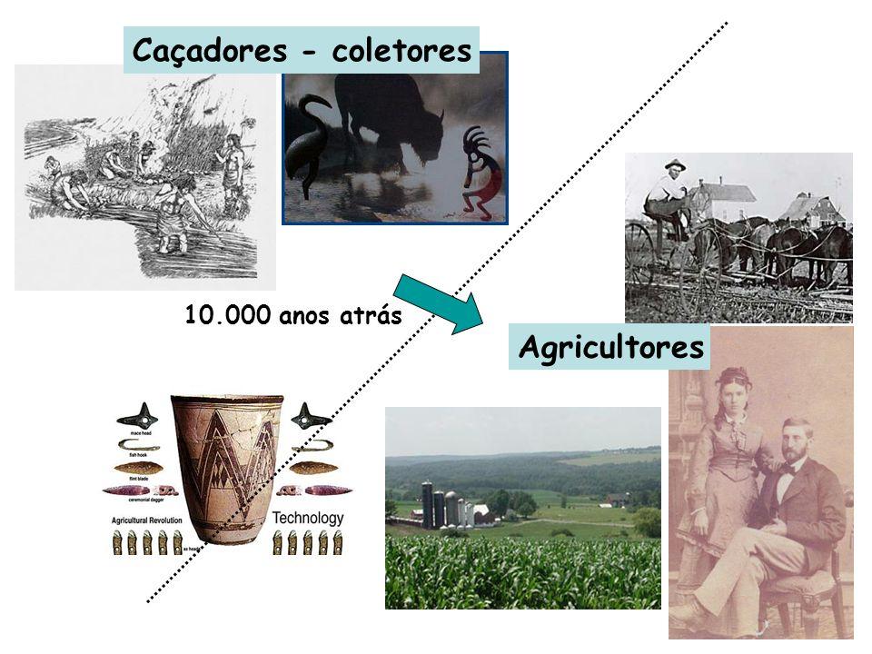 10.000 anos atrás Caçadores - coletores Agricultores