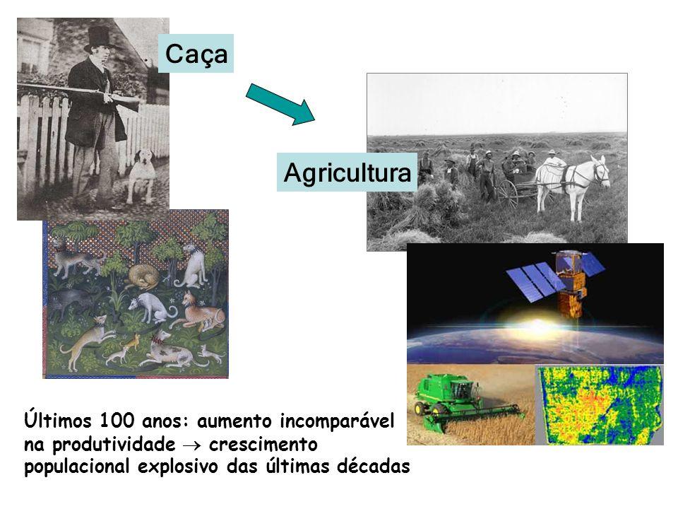 Agricultura Caça Últimos 100 anos: aumento incomparável na produtividade crescimento populacional explosivo das últimas décadas
