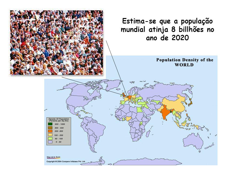 Estima-se que a população mundial atinja 8 billhões no ano de 2020