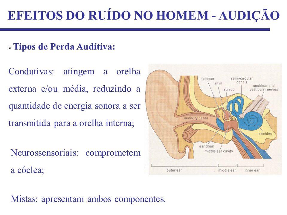 EFEITOS DO RUÍDO NO HOMEM - AUDIÇÃO Tipos de Perda Auditiva: Condutivas: atingem a orelha externa e/ou média, reduzindo a quantidade de energia sonora a ser transmitida para a orelha interna; Neurossensoriais: comprometem a cóclea; Mistas: apresentam ambos componentes.