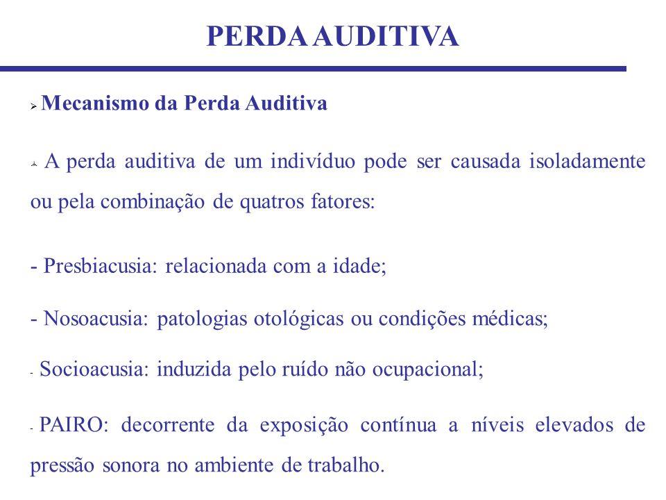 TIPOS DE PERDA AUDITIVA Trauma Acústico Perda Auditiva Permanente (Mudança permanente do limiar auditivo - PTS) Perda Auditiva Temporária (Mudança temporária do limiar auditivo - TTS)