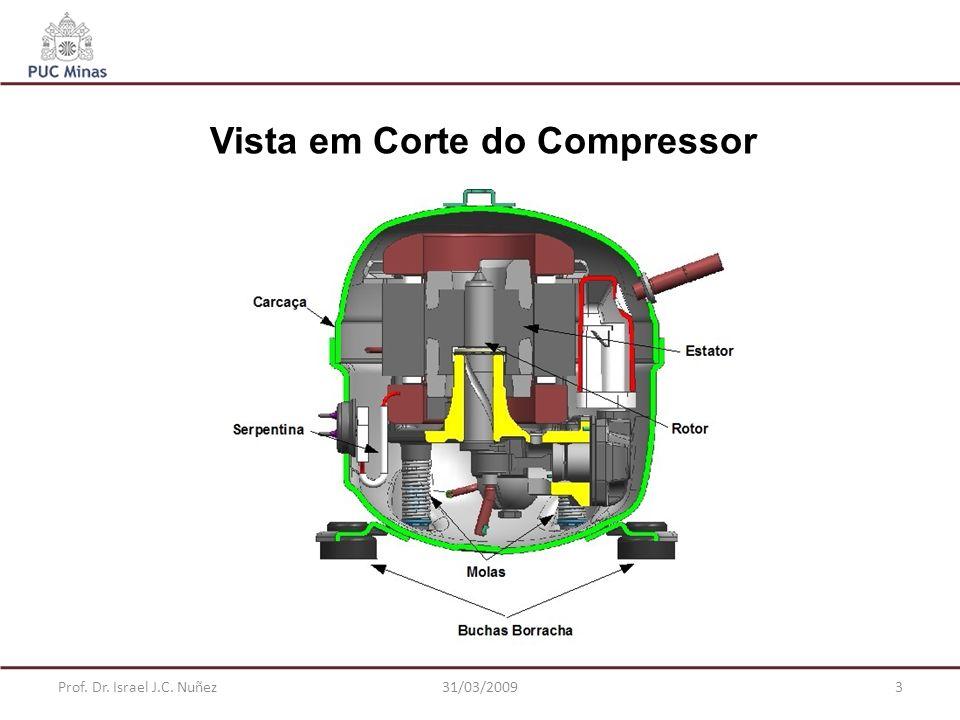 Prof. Dr. Israel J.C. Nuñez31/03/20093 Vista em Corte do Compressor