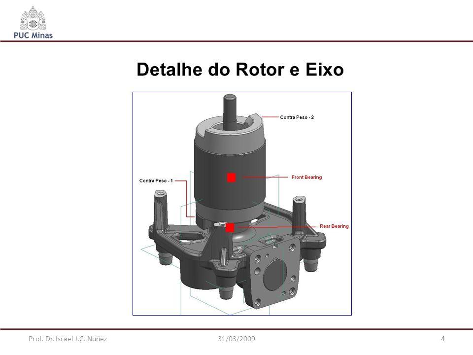 Prof. Dr. Israel J.C. Nuñez31/03/20094 Detalhe do Rotor e Eixo