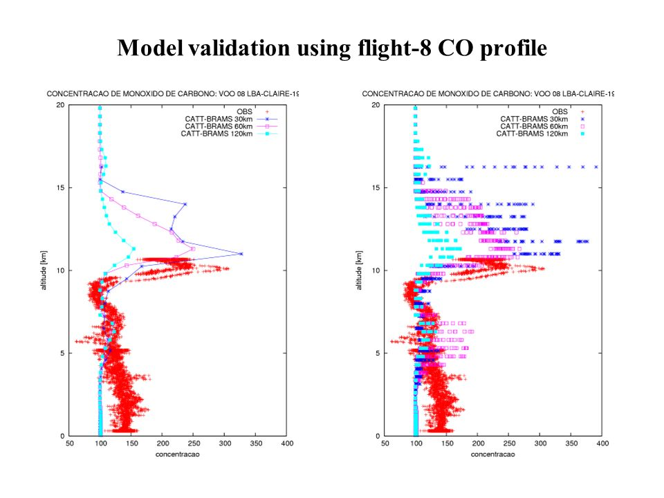 Model validation using flight-8 CO profile