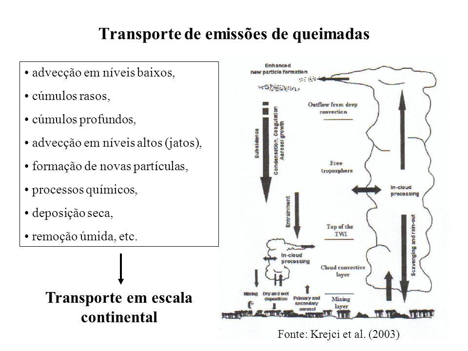 Transporte de emissões de queimadas advecção em níveis baixos, cúmulos rasos, cúmulos profundos, advecção em níveis altos (jatos), formação de novas partículas, processos químicos, deposição seca, remoção úmida, etc.