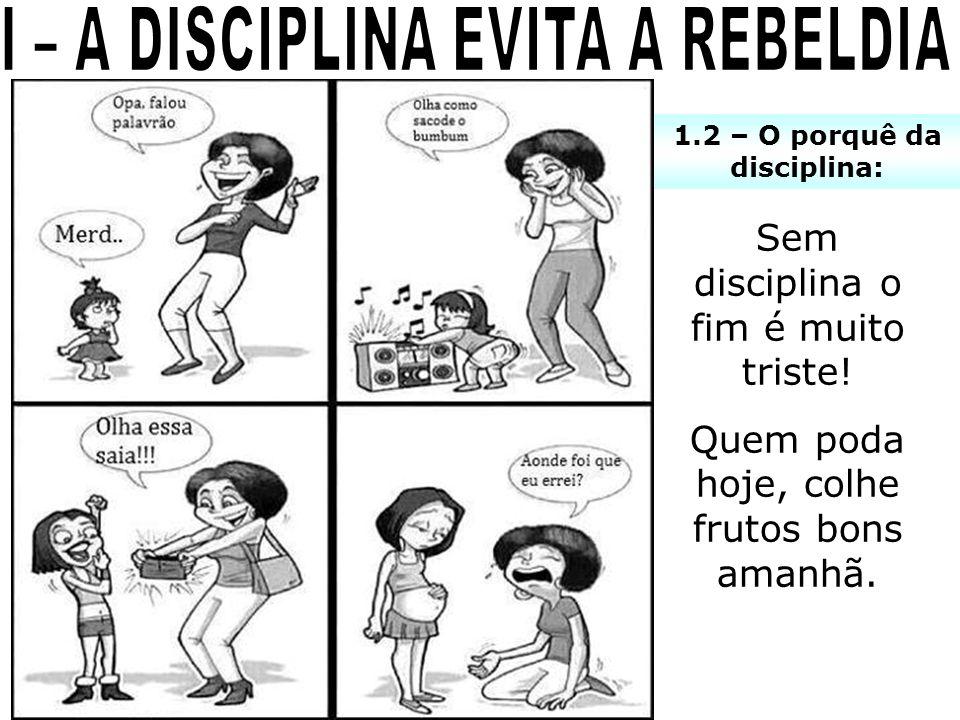 1.2 – O porquê da disciplina: Sem disciplina o fim é muito triste! Quem poda hoje, colhe frutos bons amanhã.
