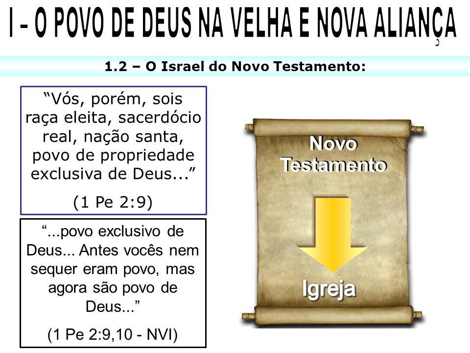 1.2 – O Israel do Novo Testamento: Novo Testamento Novo Testamento Vós, porém, sois raça eleita, sacerdócio real, nação santa, povo de propriedade exc
