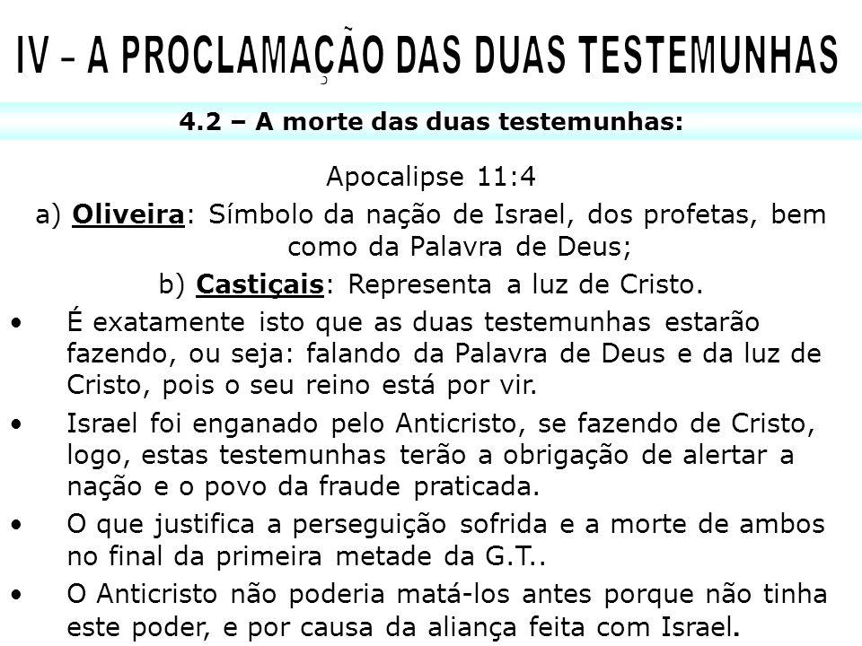 4.2 – A morte das duas testemunhas: Apocalipse 11:4 a) Oliveira: Símbolo da nação de Israel, dos profetas, bem como da Palavra de Deus; b) Castiçais: