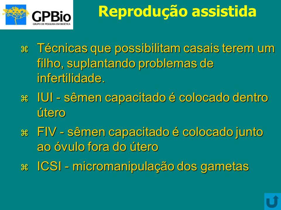 Células-tronco embrionárias Quais as consequências de longo prazo.