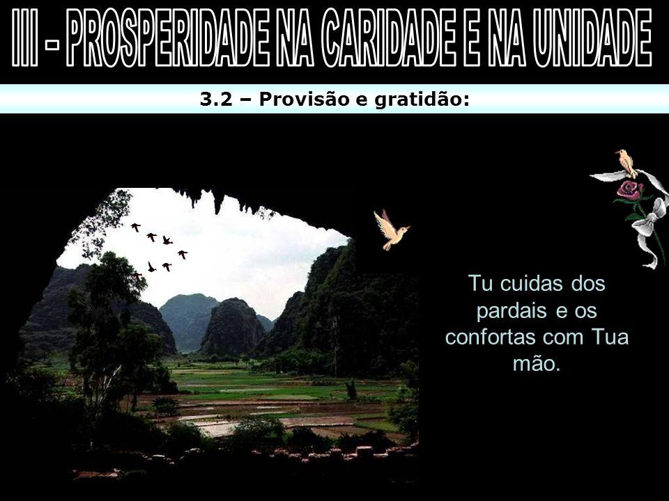3.2 – Provisão e gratidão: 1 Tudo quanto Deus declarou, Ele irá fazer. Isto diz respeito: Às bençãos temporais (I Tm 4:8 / Sl 84:11). Às bençãos espir