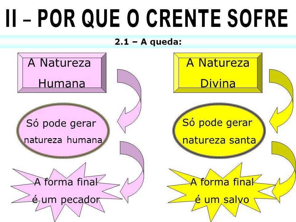 2.1 – A queda: A Natureza Humana Só pode gerar natureza humana A forma final é um pecador A Natureza Divina Só pode gerar natureza santa A forma final