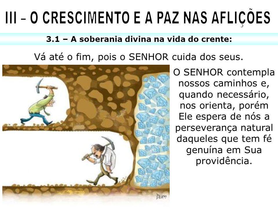 3.1 – A soberania divina na vida do crente: Vá até o fim, pois o SENHOR cuida dos seus. O SENHOR contempla nossos caminhos e, quando necessário, nos o