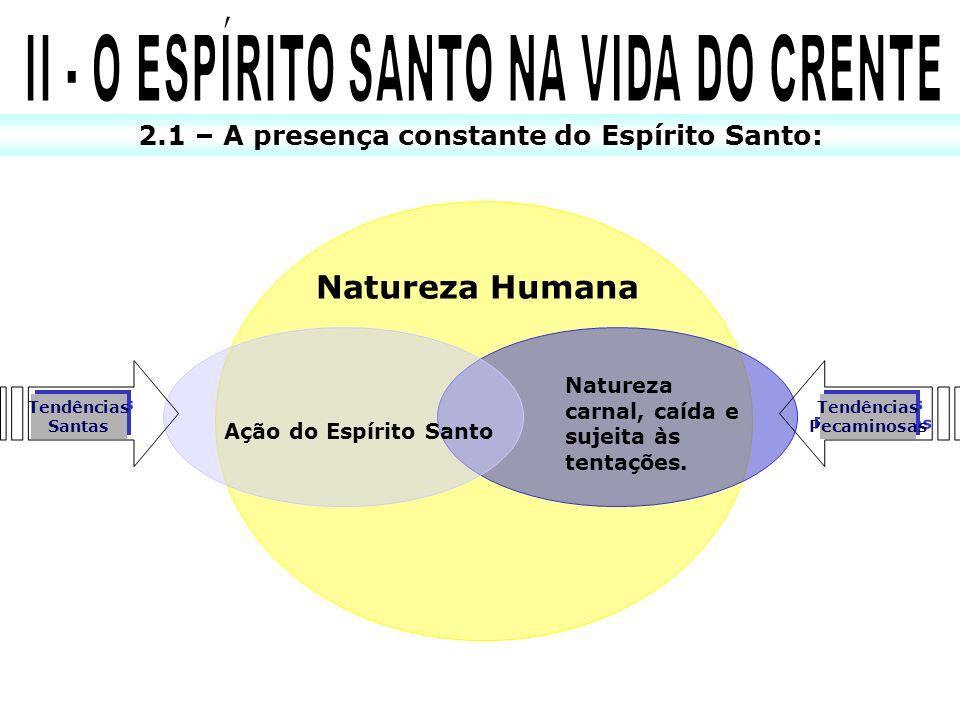 2.1 – A presença constante do Espírito Santo: Tendências Pecaminosas Tendências Pecaminosas Tendências Santas Tendências Santas Natureza Humana Ação d