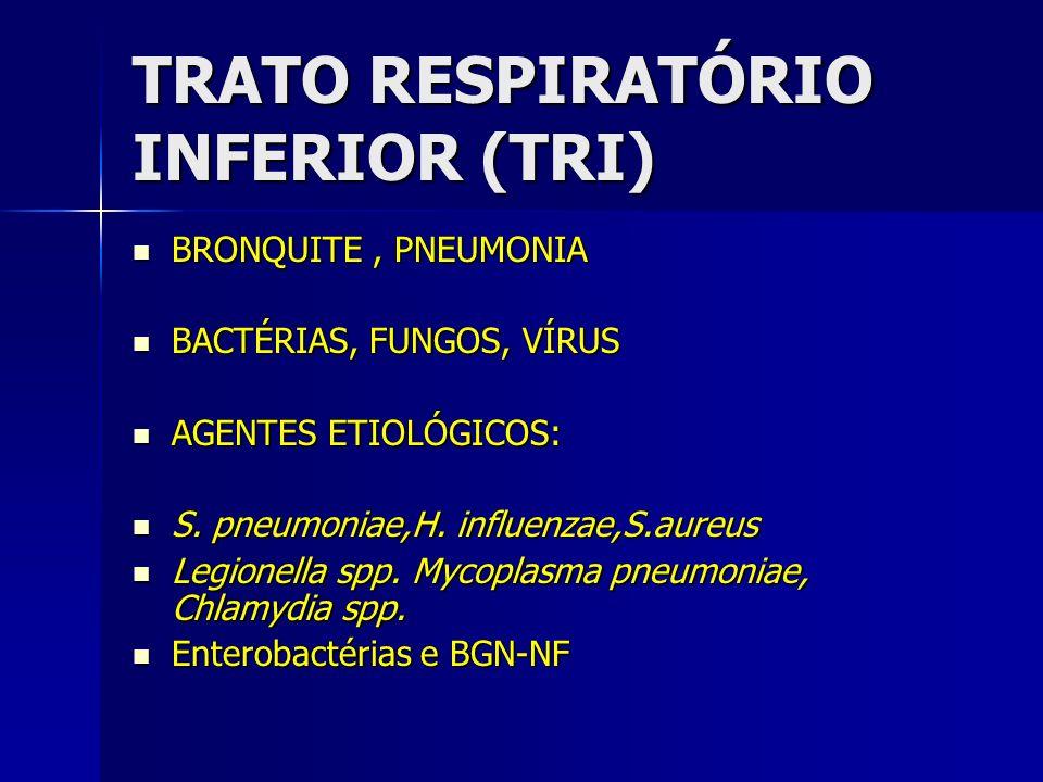 TRATO RESPIRATÓRIO INFERIOR (TRI) BRONQUITE, PNEUMONIA BRONQUITE, PNEUMONIA BACTÉRIAS, FUNGOS, VÍRUS BACTÉRIAS, FUNGOS, VÍRUS AGENTES ETIOLÓGICOS: AGE
