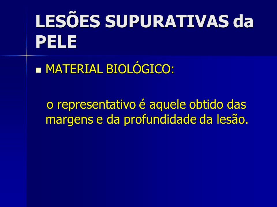 LESÕES SUPURATIVAS da PELE MATERIAL BIOLÓGICO: MATERIAL BIOLÓGICO: o representativo é aquele obtido das margens e da profundidade da lesão. o represen