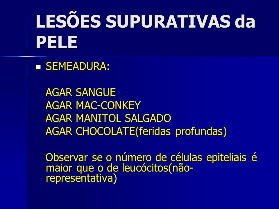 LESÕES SUPURATIVAS da PELE SEMEADURA: SEMEADURA: AGAR SANGUE AGAR SANGUE AGAR MAC-CONKEY AGAR MAC-CONKEY AGAR MANITOL SALGADO AGAR MANITOL SALGADO AGA