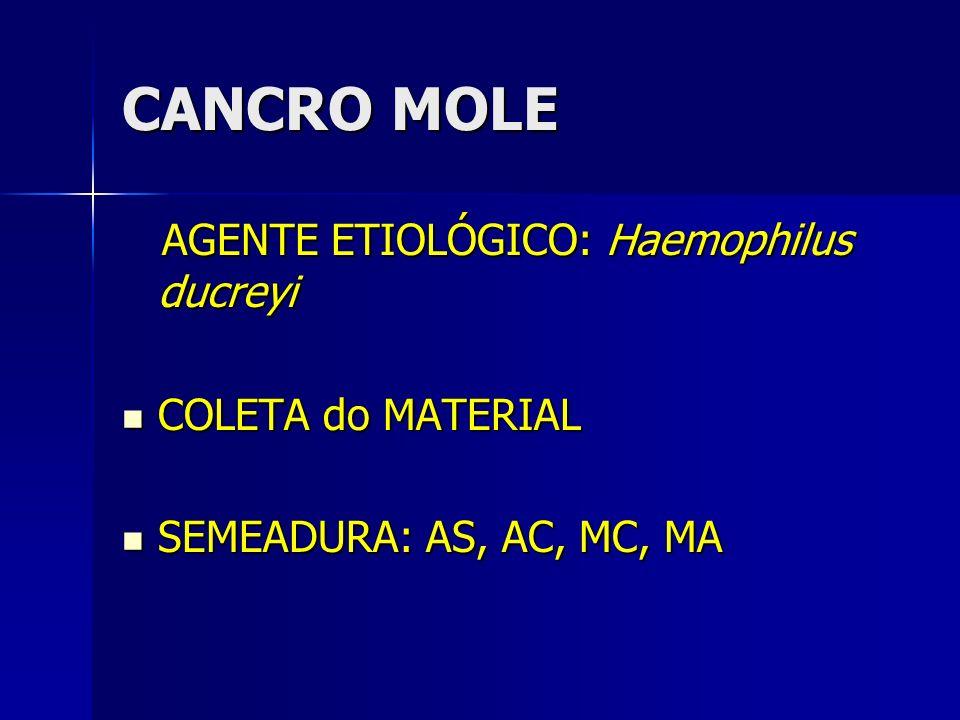 CANCRO MOLE AGENTE ETIOLÓGICO: Haemophilus ducreyi AGENTE ETIOLÓGICO: Haemophilus ducreyi COLETA do MATERIAL COLETA do MATERIAL SEMEADURA: AS, AC, MC,