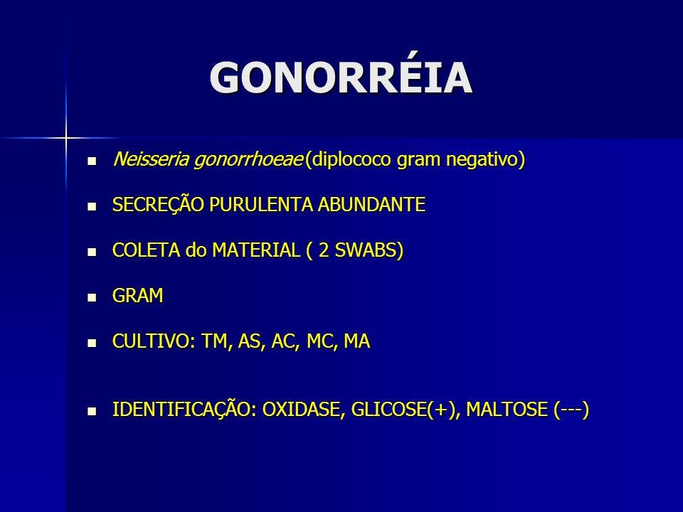 GONORRÉIA GONORRÉIA Neisseria gonorrhoeae (diplococo gram negativo) Neisseria gonorrhoeae (diplococo gram negativo) SECREÇÃO PURULENTA ABUNDANTE SECRE