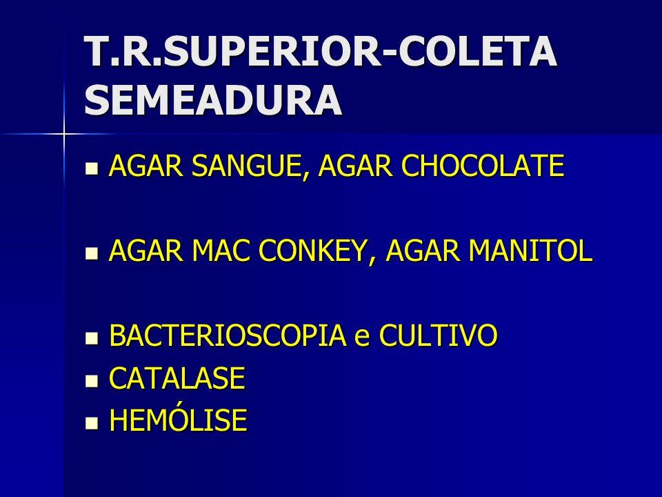 T.R.SUPERIOR-COLETA SEMEADURA AGAR SANGUE, AGAR CHOCOLATE AGAR SANGUE, AGAR CHOCOLATE AGAR MAC CONKEY, AGAR MANITOL AGAR MAC CONKEY, AGAR MANITOL BACT
