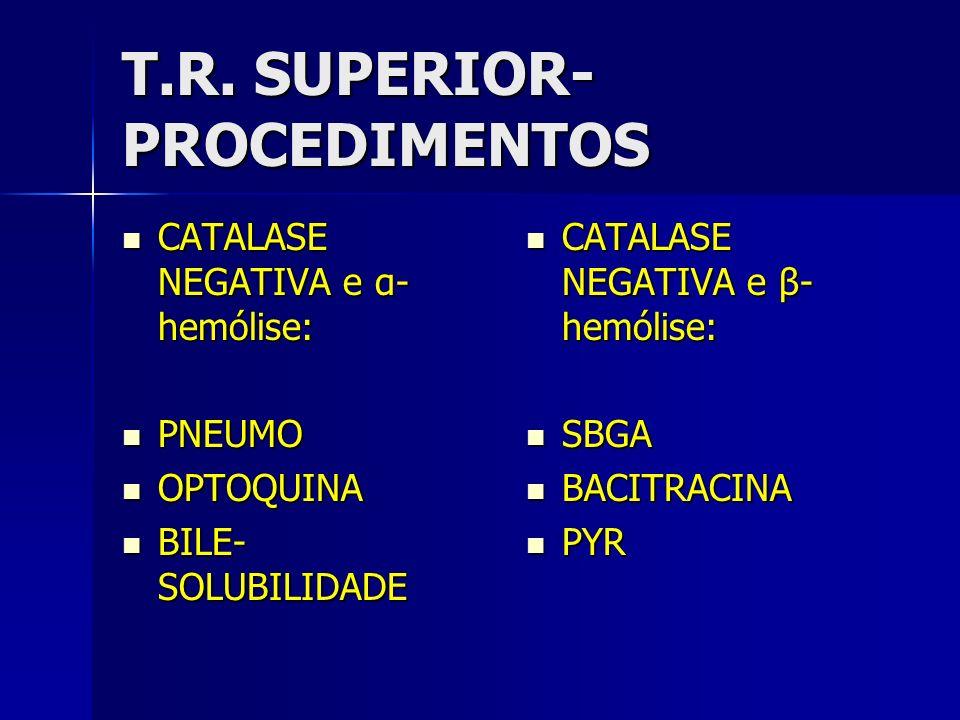 T.R. SUPERIOR- PROCEDIMENTOS CATALASE NEGATIVA e α- hemólise: CATALASE NEGATIVA e α- hemólise: PNEUMO PNEUMO OPTOQUINA OPTOQUINA BILE- SOLUBILIDADE BI