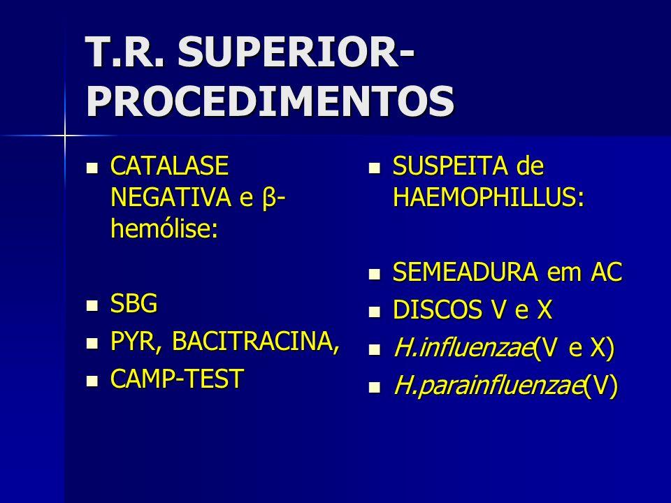 T.R. SUPERIOR- PROCEDIMENTOS CATALASE NEGATIVA e β- hemólise: CATALASE NEGATIVA e β- hemólise: SBG SBG PYR, BACITRACINA, PYR, BACITRACINA, CAMP-TEST C