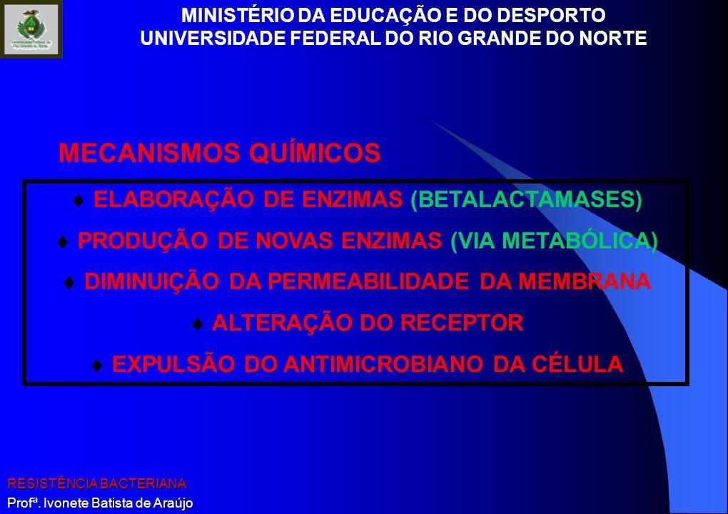 MINISTÉRIO DA EDUCAÇÃO E DO DESPORTO UNIVERSIDADE FEDERAL DO RIO GRANDE DO NORTE RESISTÊNCIA BACTERIANA Profª. Ivonete Batista de Araújo ELABORAÇÃO DE