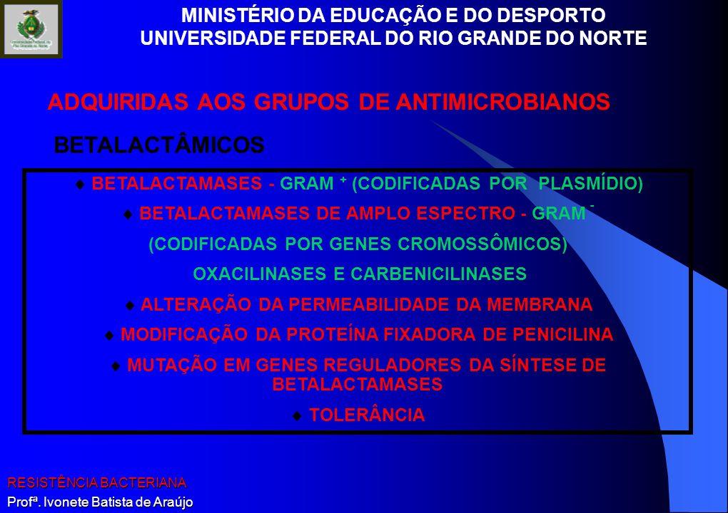 MINISTÉRIO DA EDUCAÇÃO E DO DESPORTO UNIVERSIDADE FEDERAL DO RIO GRANDE DO NORTE RESISTÊNCIA BACTERIANA Profª. Ivonete Batista de Araújo BETALACTAMASE