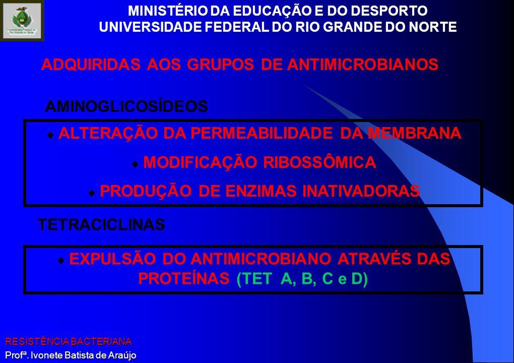 MINISTÉRIO DA EDUCAÇÃO E DO DESPORTO UNIVERSIDADE FEDERAL DO RIO GRANDE DO NORTE RESISTÊNCIA BACTERIANA Profª. Ivonete Batista de Araújo ALTERAÇÃO DA