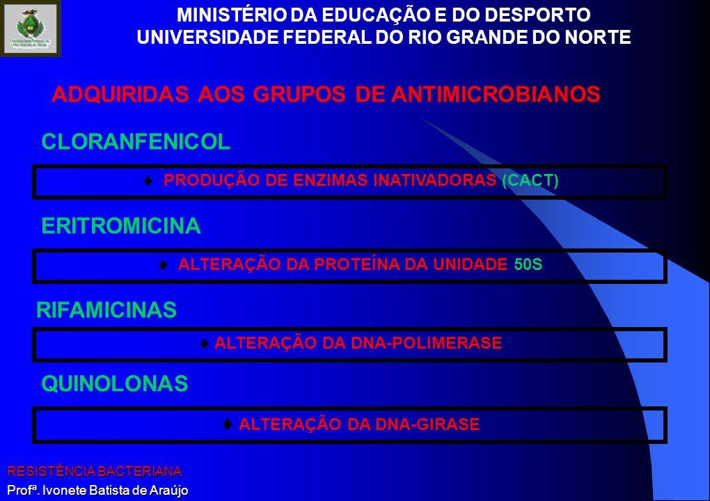 MINISTÉRIO DA EDUCAÇÃO E DO DESPORTO UNIVERSIDADE FEDERAL DO RIO GRANDE DO NORTE RESISTÊNCIA BACTERIANA Profª. Ivonete Batista de Araújo CLORANFENICOL