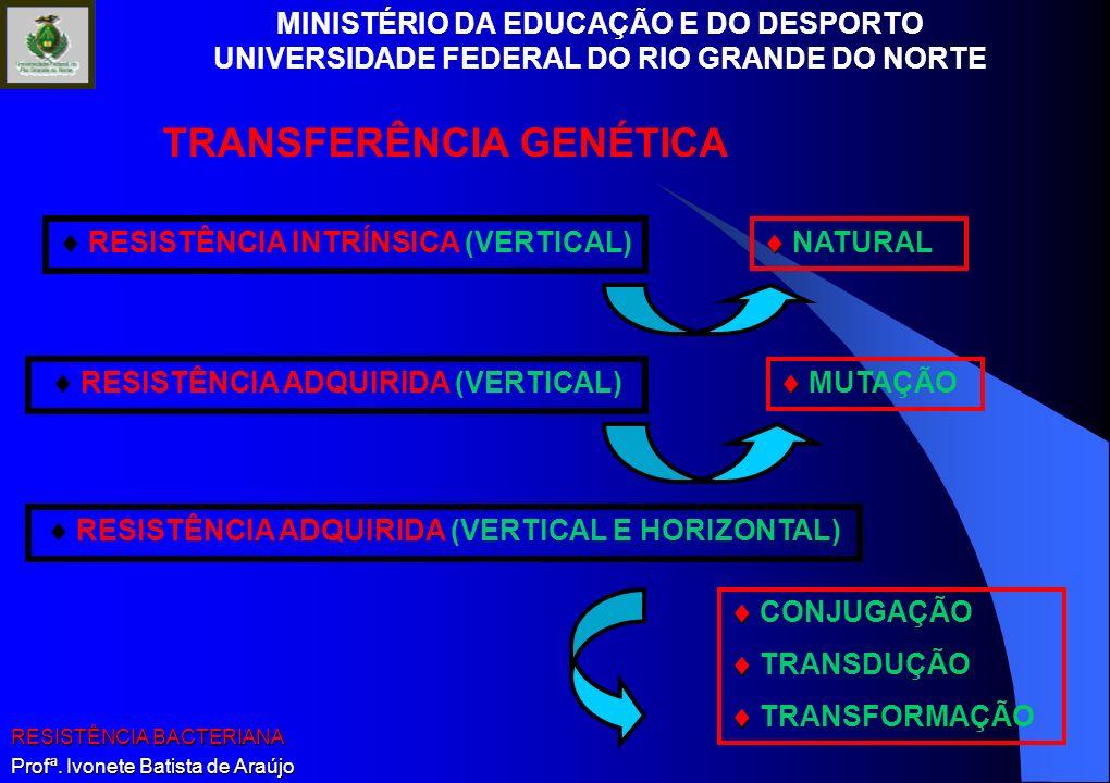 MINISTÉRIO DA EDUCAÇÃO E DO DESPORTO UNIVERSIDADE FEDERAL DO RIO GRANDE DO NORTE RESISTÊNCIA BACTERIANA Profª. Ivonete Batista de Araújo RESISTÊNCIA I
