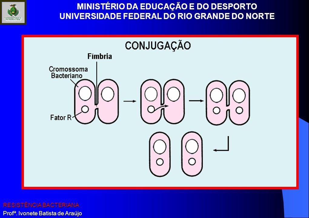 MINISTÉRIO DA EDUCAÇÃO E DO DESPORTO UNIVERSIDADE FEDERAL DO RIO GRANDE DO NORTE RESISTÊNCIA BACTERIANA Profª. Ivonete Batista de Araújo