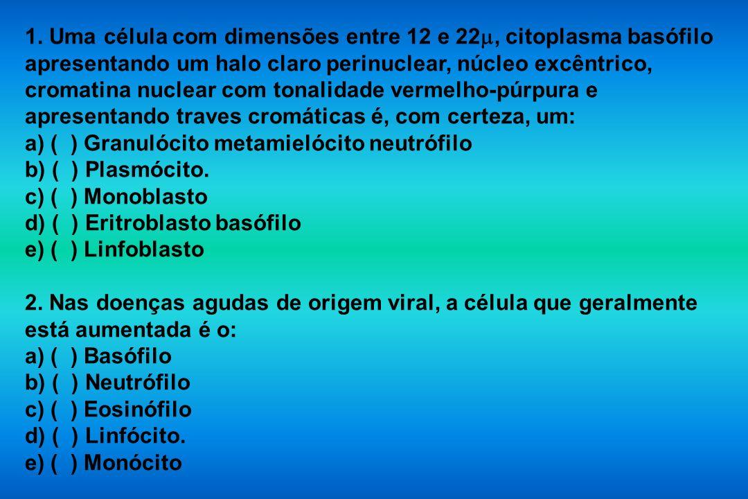 1. Uma célula com dimensões entre 12 e 22, citoplasma basófilo apresentando um halo claro perinuclear, núcleo excêntrico, cromatina nuclear com tonali