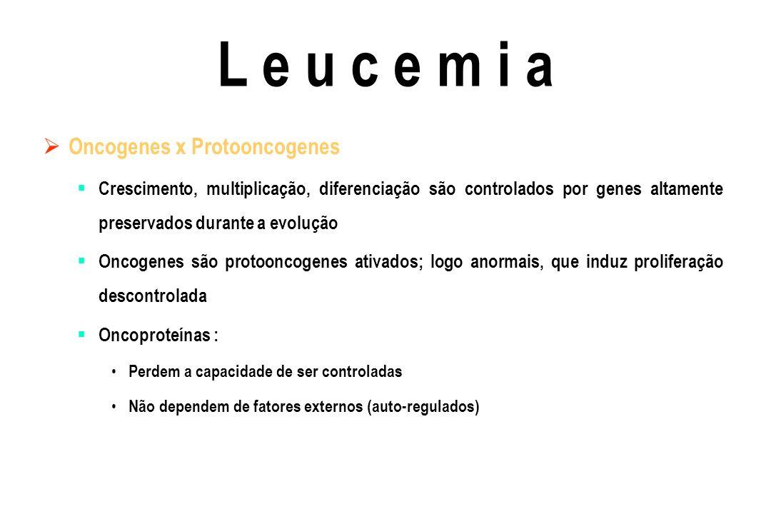Qual a importância clínica da classificação imunológica no diagnóstico das leucemias agudas .