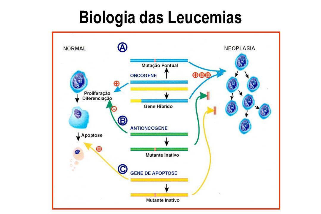 Biologia das Leucemias - Oncogenes