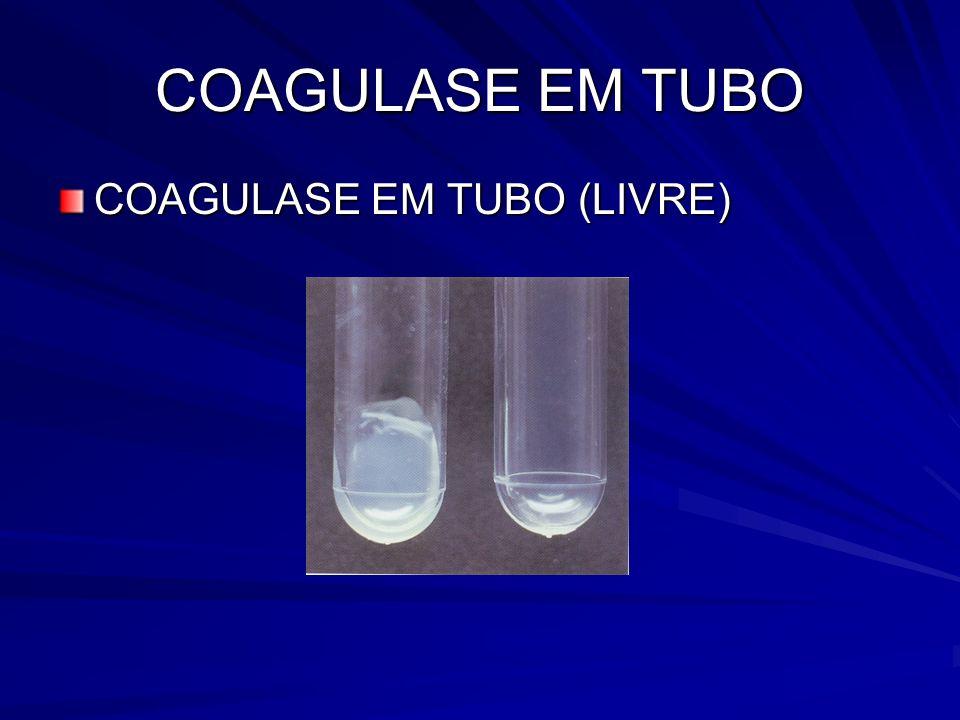 COAGULASE EM TUBO COAGULASE EM TUBO (LIVRE)