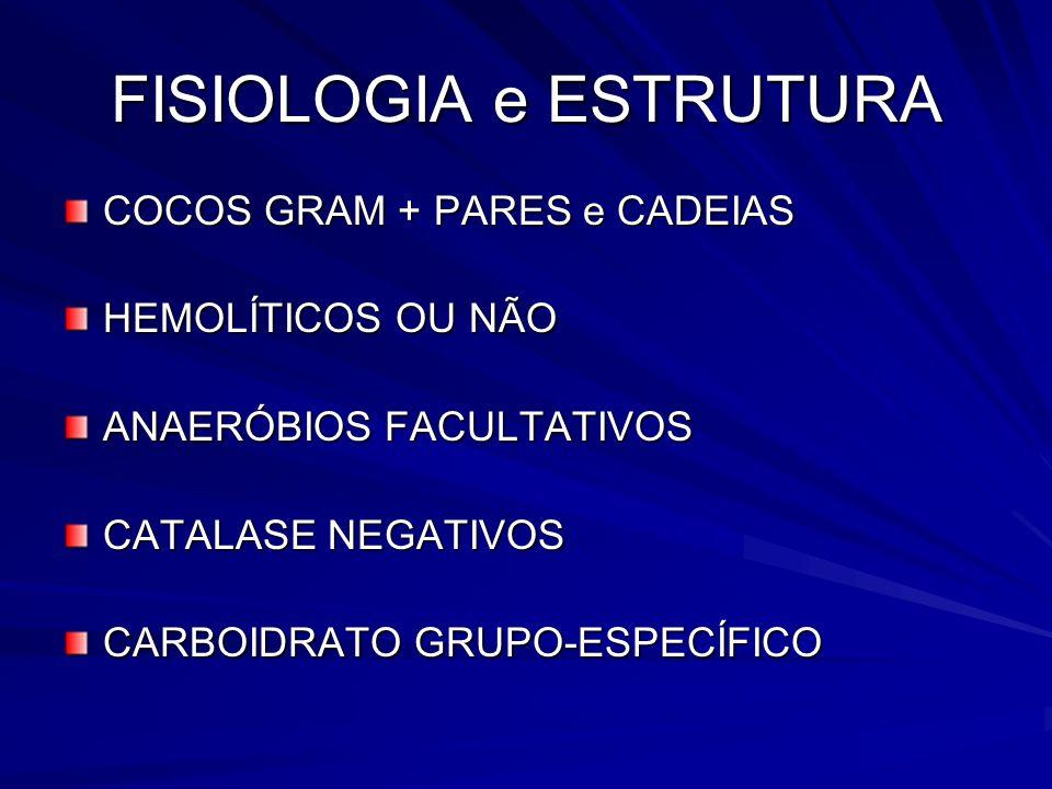 FISIOLOGIA e ESTRUTURA COCOS GRAM + PARES e CADEIAS HEMOLÍTICOS OU NÃO ANAERÓBIOS FACULTATIVOS CATALASE NEGATIVOS CARBOIDRATO GRUPO-ESPECÍFICO