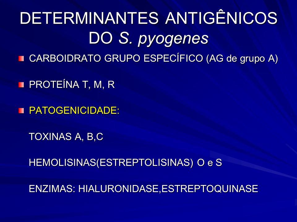 DETERMINANTES ANTIGÊNICOS DO S. pyogenes CARBOIDRATO GRUPO ESPECÍFICO (AG de grupo A) PROTEÍNA T, M, R PATOGENICIDADE: TOXINAS A, B,C TOXINAS A, B,C H