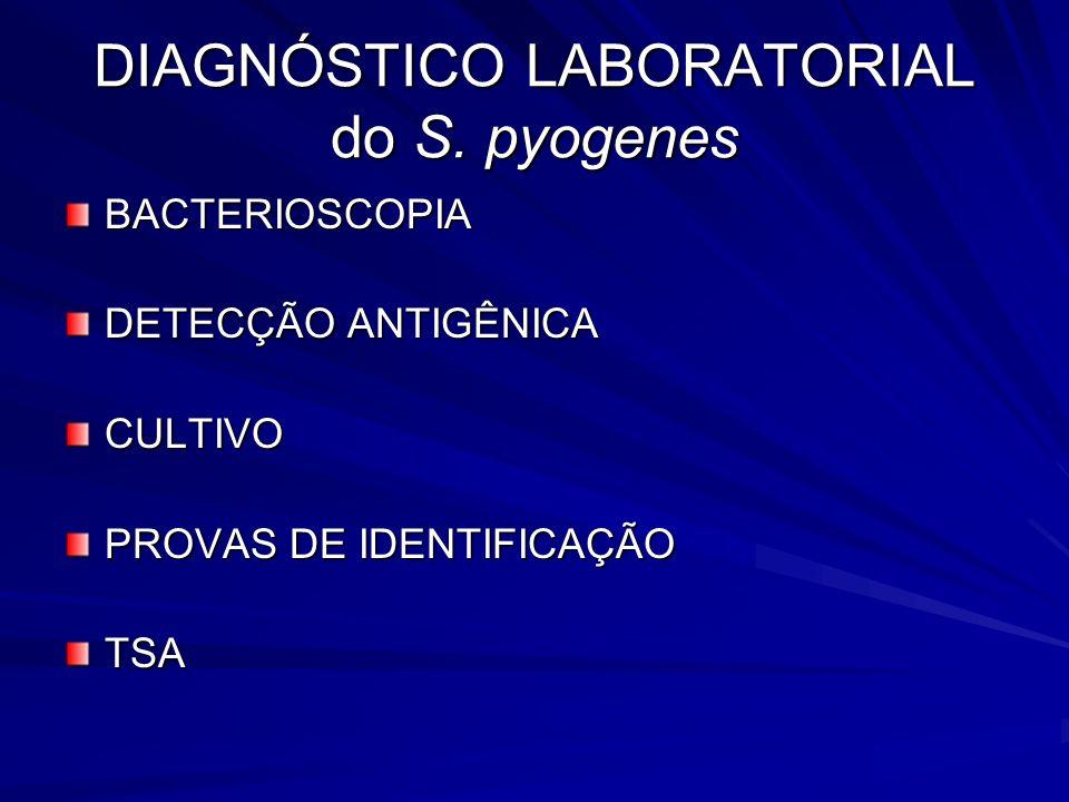 DIAGNÓSTICO LABORATORIAL do S. pyogenes BACTERIOSCOPIA DETECÇÃO ANTIGÊNICA CULTIVO PROVAS DE IDENTIFICAÇÃO TSA