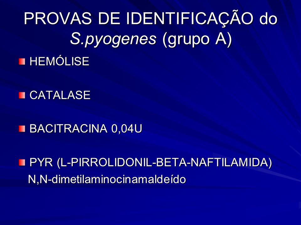 PROVAS DE IDENTIFICAÇÃO do S.pyogenes (grupo A) HEMÓLISECATALASE BACITRACINA 0,04U PYR (L-PIRROLIDONIL-BETA-NAFTILAMIDA) N,N-dimetilaminocinamaldeído