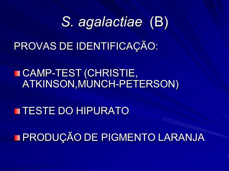 S. agalactiae (B) PROVAS DE IDENTIFICAÇÃO: CAMP-TEST (CHRISTIE, ATKINSON,MUNCH-PETERSON) TESTE DO HIPURATO PRODUÇÃO DE PIGMENTO LARANJA