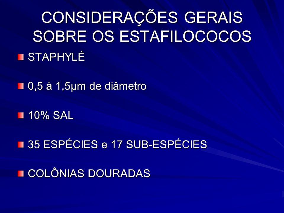 CONSIDERAÇÕES GERAIS SOBRE OS ESTAFILOCOCOS STAPHYLÉ 0,5 à 1,5µm de diâmetro 10% SAL 35 ESPÉCIES e 17 SUB-ESPÉCIES COLÔNIAS DOURADAS