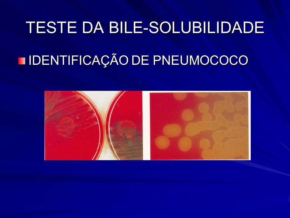 TESTE DA BILE-SOLUBILIDADE IDENTIFICAÇÃO DE PNEUMOCOCO
