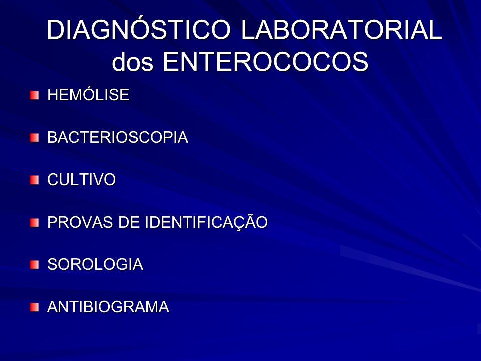 DIAGNÓSTICO LABORATORIAL dos ENTEROCOCOS DIAGNÓSTICO LABORATORIAL dos ENTEROCOCOS HEMÓLISEBACTERIOSCOPIACULTIVO PROVAS DE IDENTIFICAÇÃO SOROLOGIAANTIB