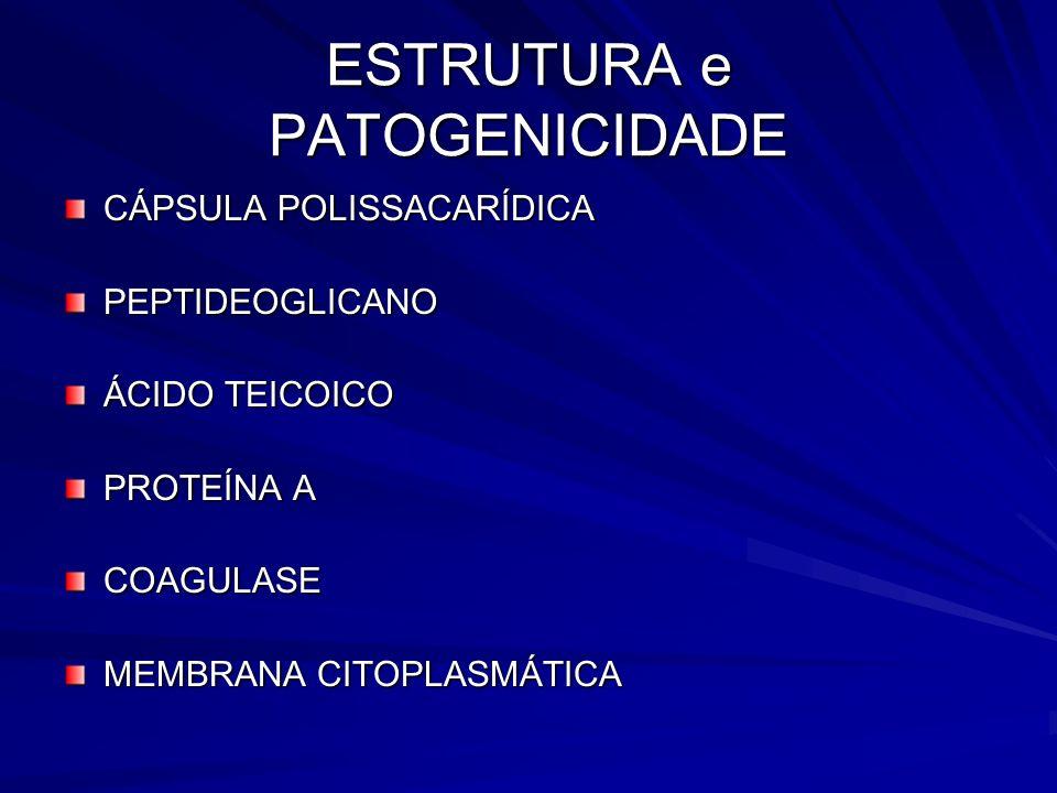 ESTRUTURA e PATOGENICIDADE CÁPSULA POLISSACARÍDICA PEPTIDEOGLICANO ÁCIDO TEICOICO PROTEÍNA A COAGULASE MEMBRANA CITOPLASMÁTICA