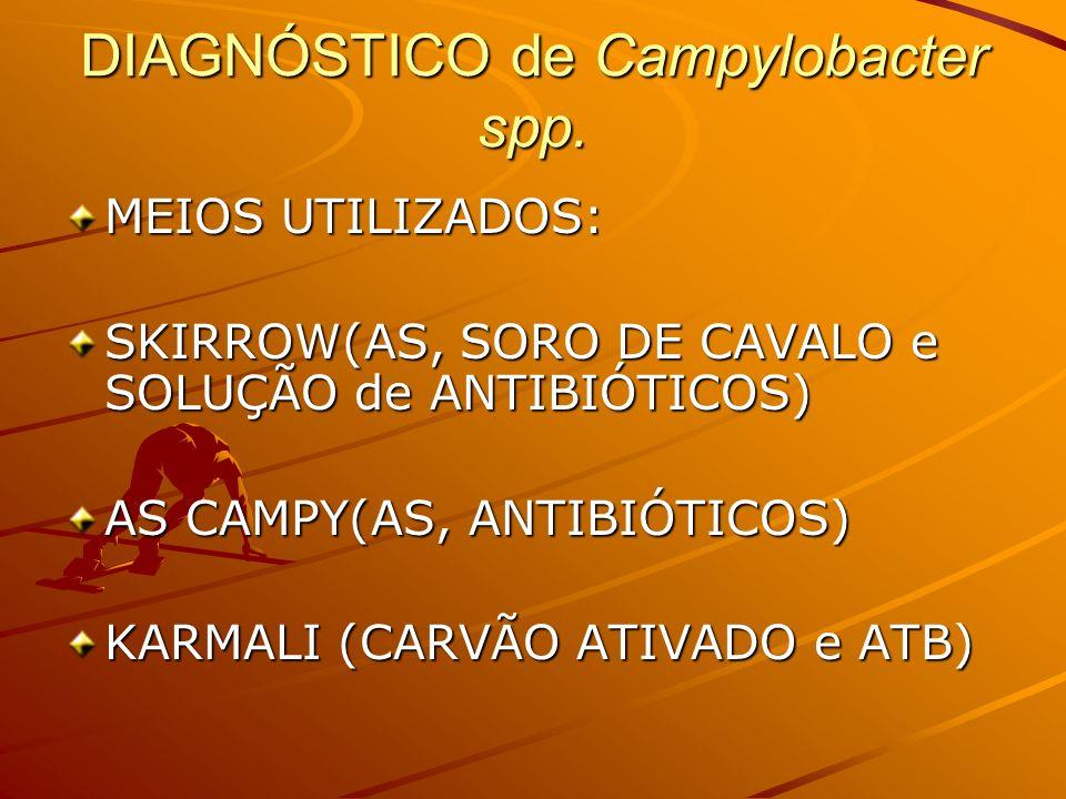 DIAGNÓSTICO de Campylobacter spp.INCUBAÇÃO 48 hs.