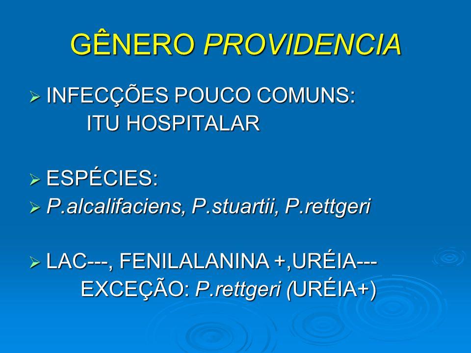 GÊNERO PROVIDENCIA INFECÇÕES POUCO COMUNS: INFECÇÕES POUCO COMUNS: ITU HOSPITALAR ITU HOSPITALAR ESPÉCIES: ESPÉCIES: P.alcalifaciens, P.stuartii, P.re
