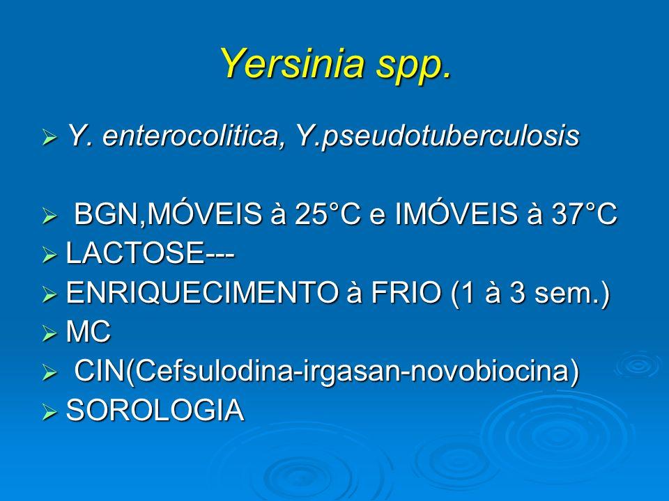 Yersinia spp. Y. enterocolitica, Y.pseudotuberculosis Y. enterocolitica, Y.pseudotuberculosis BGN,MÓVEIS à 25°C e IMÓVEIS à 37°C BGN,MÓVEIS à 25°C e I