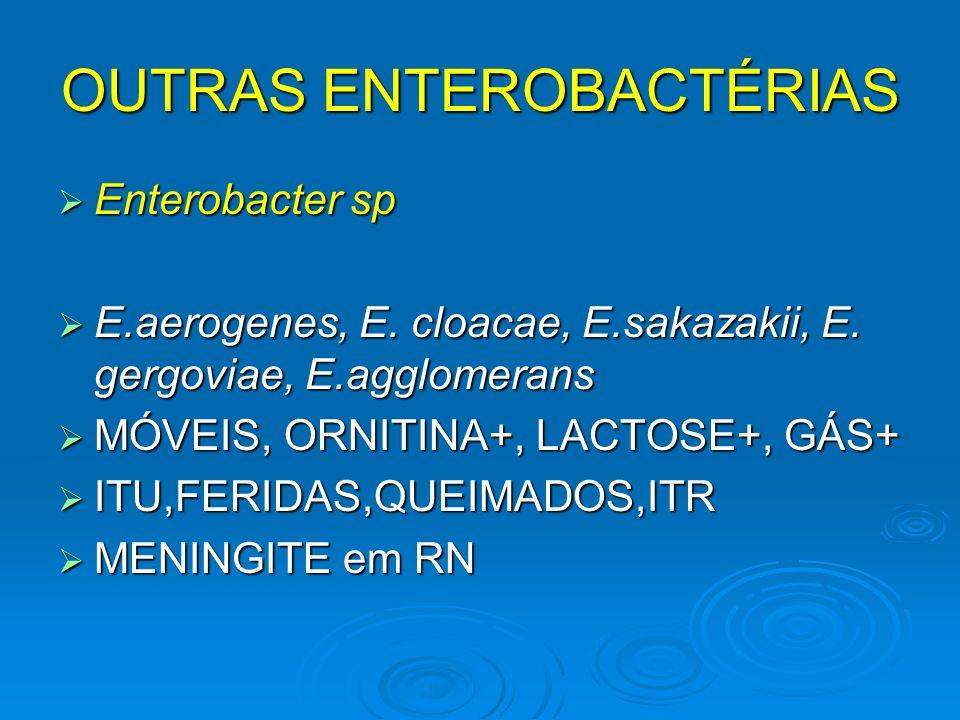 OUTRAS ENTEROBACTÉRIAS Enterobacter sp Enterobacter sp E.aerogenes, E. cloacae, E.sakazakii, E. gergoviae, E.agglomerans E.aerogenes, E. cloacae, E.sa