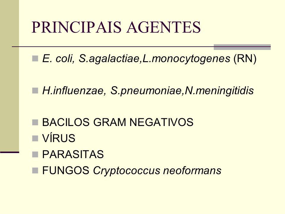 PRINCIPAIS AGENTES E. coli, S.agalactiae,L.monocytogenes (RN) H.influenzae, S.pneumoniae,N.meningitidis BACILOS GRAM NEGATIVOS VÍRUS PARASITAS FUNGOS