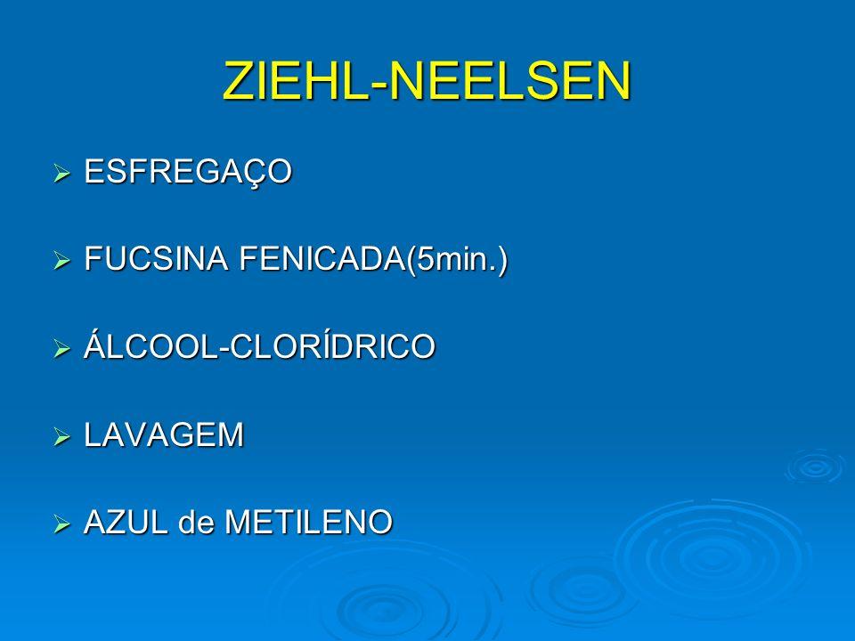 ZIEHL-NEELSEN ESFREGAÇO ESFREGAÇO FUCSINA FENICADA(5min.) FUCSINA FENICADA(5min.) ÁLCOOL-CLORÍDRICO ÁLCOOL-CLORÍDRICO LAVAGEM LAVAGEM AZUL de METILENO AZUL de METILENO